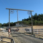 Gate hung